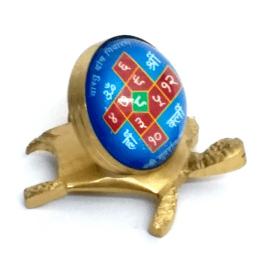 Vastu Dosh Tortoise